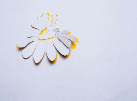 Image of abstract yellow flower and butterfly  handmade.Eco background. photo