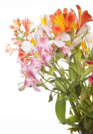 A bunch of wonderful alstroemeria flowers  photo