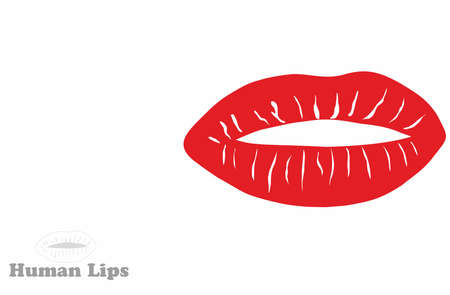 Print of red lips on the white background. Vector illustration. illustration