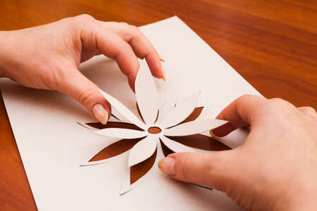 Making flower from white paper in closeup photo