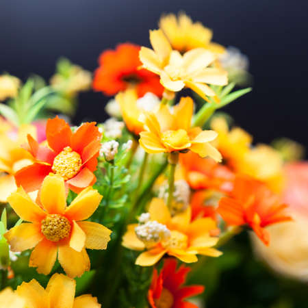 Beautiful bouquet of bright flowers on the black backdrop photo