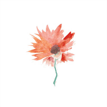 transparently: Abstract flower. Floral decorative element.