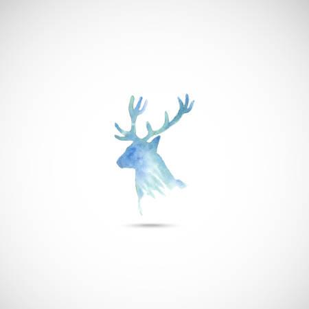 roe deer: Watercolor deer head. Vector. Illustration