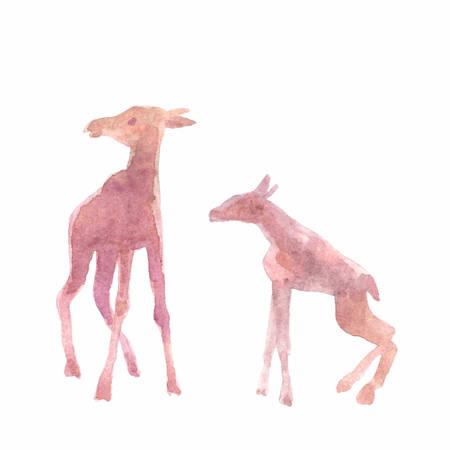 Baby elks