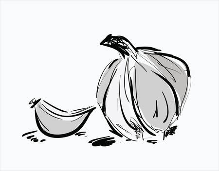 Hand drawn illustrations with garlic Stock Vector - 36106269