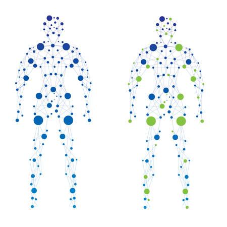 corpo umano: Estratto umana
