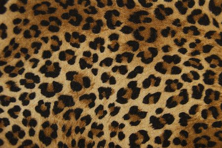 background cloth as a tiger Stock Photo - 5090833