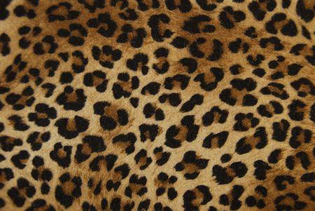 background cloth as a tiger Standard-Bild