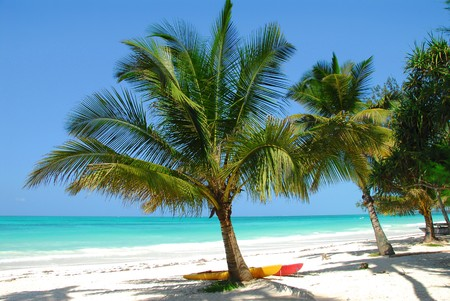 beach in Zanzibar photo