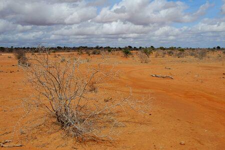 earth road: strada di terra rossa in Kenya