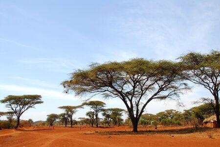 Landschaft der afrikanischen typische