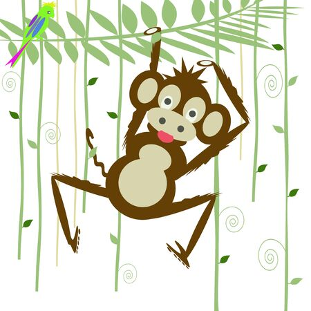 monkey in the forest Stock Photo - 8377671