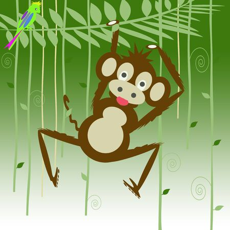 monkey in the forest Stock Photo - 8377677