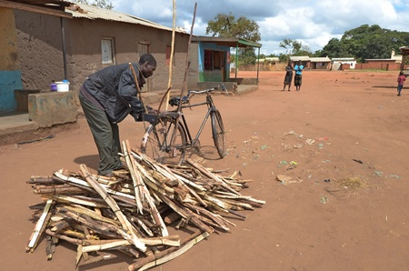 malawi: salima,malawi,april 6, 2011: an african man in is village loading his bike large bundles of firewood on their head  Editorial