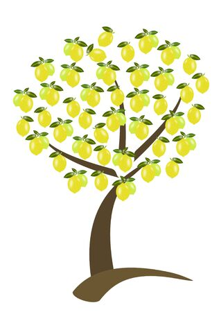 lemon tree: tree of lemon with the fruit