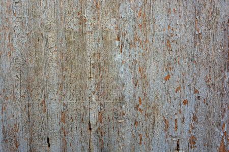 textura: wood panel  Stock Photo