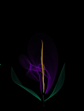 vanished: abstract flower