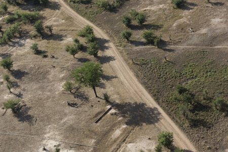 zambian: Zambian savannah view from the sky