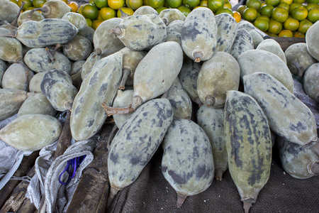 zambia: Baobab fruit Stock Photo