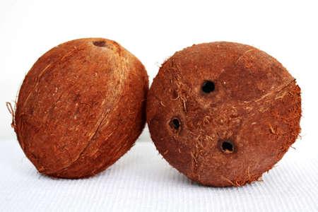 Coco-nut photo