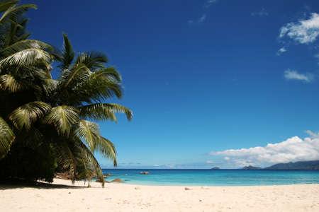 Beatiful beach in the Indian Ocean photo