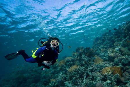 Female diver floating over a beautiful coral reef in the Red Sea, Egypt photo
