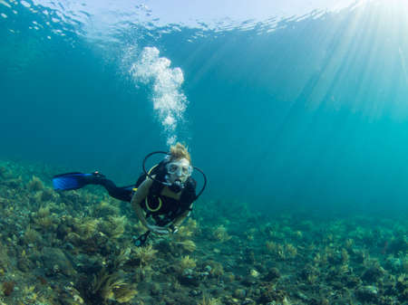 Female Scuba diver hovering over a coral reef at Tulamben Bali Indonesia Banco de Imagens
