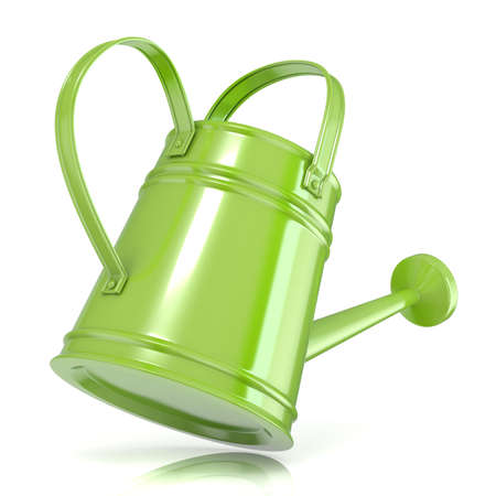 sprinkling: Green watering can 3D render isolated white background. Back view