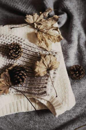 Herbstlaub auf Winterwolle Pullover mit Kiefernzapfen Standard-Bild - 88992482