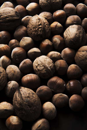 hazelnuts and walnuts on wooden background
