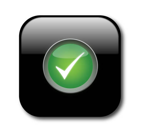 Check button Vector