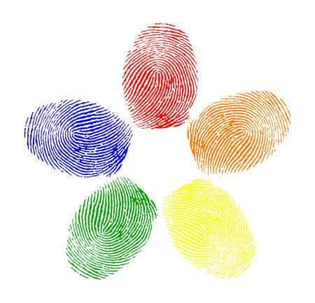 Colored fingerprint Stock Vector - 8273048