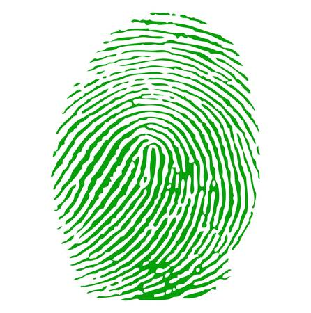 id theft: Green finger print