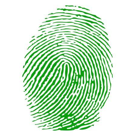 empreintes digitales: Impression vert doigt Illustration