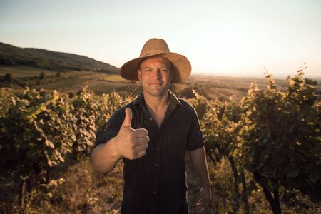only one mid adult male: Vineyard Success - farmer gives you thumb up