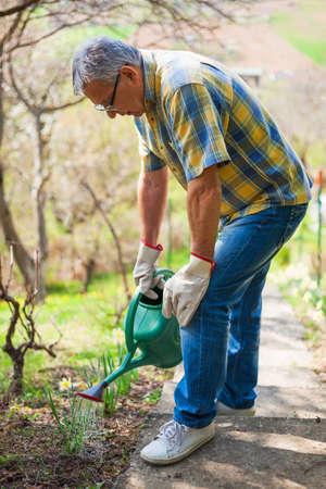 village man: Senior man in his garden. He is watering plants.