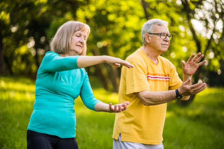 Senior couple is enjoying Tai Chi exercise in park. Archivio Fotografico