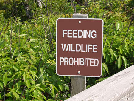 Feeding Wildlife Prohibited Sign