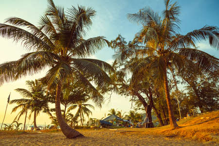 Tropical beach at beautiful sunset. Phuket, Thailand.