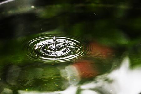 Welligkeit ist eine kreisförmige Welle, die sich aus dem Tropfen ausbreitet. Standard-Bild - 85017146