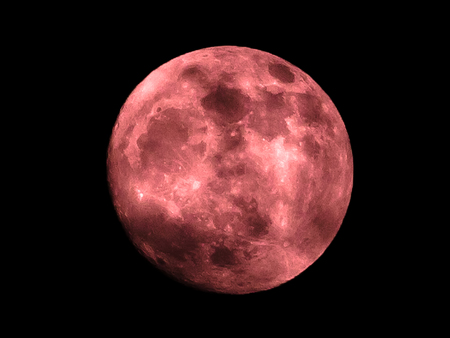 The night of the red full moon in the sky as a background.