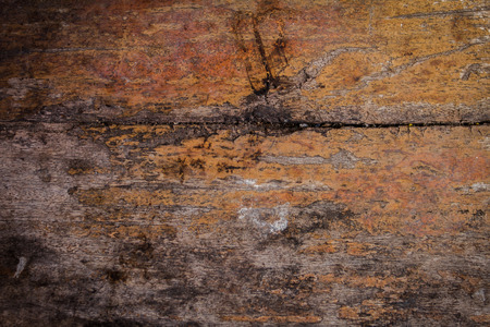 The grunge of wood is very old as the background. Zdjęcie Seryjne - 109421034