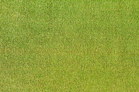 Beautiful green artificial grass as a background Zdjęcie Seryjne