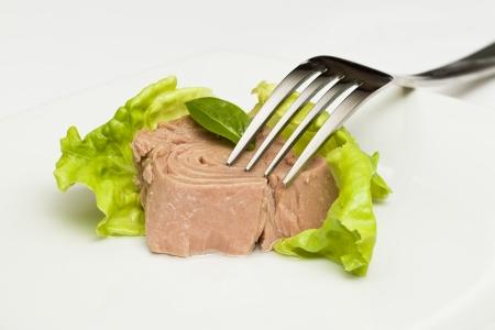 Thunfisch in Dosen Stücke mit grünem Salat und Gabel Standard-Bild - 22866501
