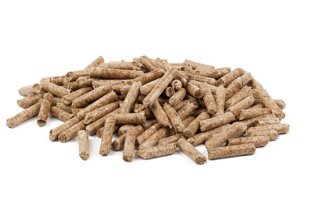 pellet gun: Wood pellets are a type of wood fuel, generally made from compacted sawdust.