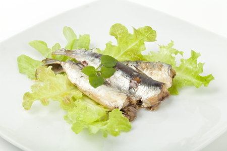 sardines on a white background and green salad photo
