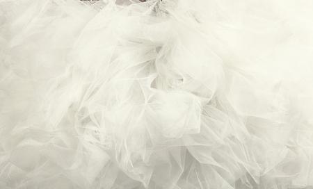 bodas de plata: fondo de tul blanco de cerca