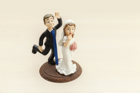 bride and groom wedding cake decorations, funny caracters