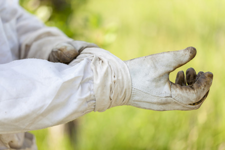 Protective gloves for beekeepers , close up Stock Photo