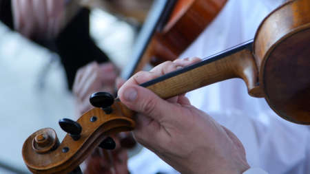 playing the violin in the orchestra. Imagens